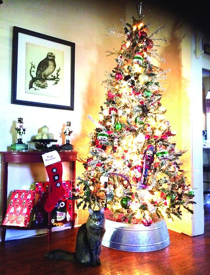 Alamosa News | Hoffman earns first-place award for top Christmas tree